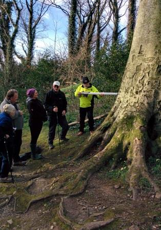 In Bishopscourt Glen with Jimmy Lee, Forestry Officer, DEFA</i>